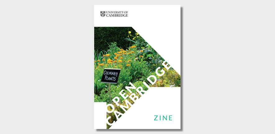 Open Cambridge 2021 food zine cover image